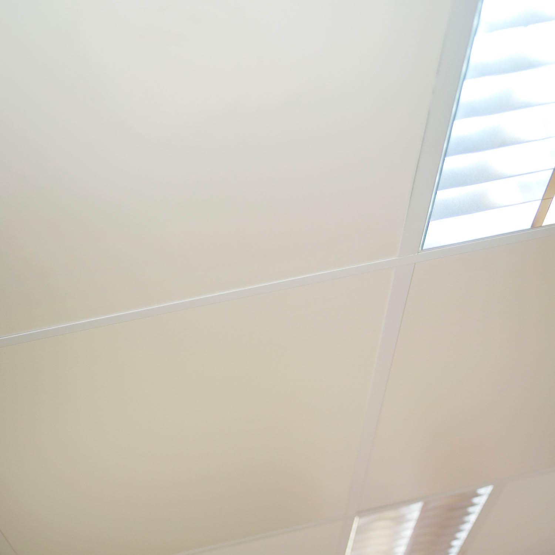 Freshtone Ceiling Tiles For Exposed Grid Systems